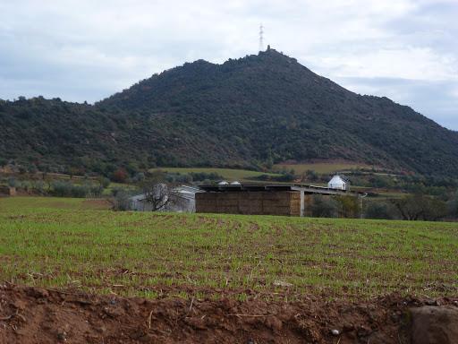 Puig de Grialó
