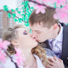 Wedding photographer Evgeniya Lebedenko (fotonk). Photo of 14.01.2014