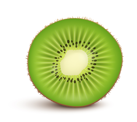 Kiwi fruit Slice isolated on white background. Vector Illustration. Киви