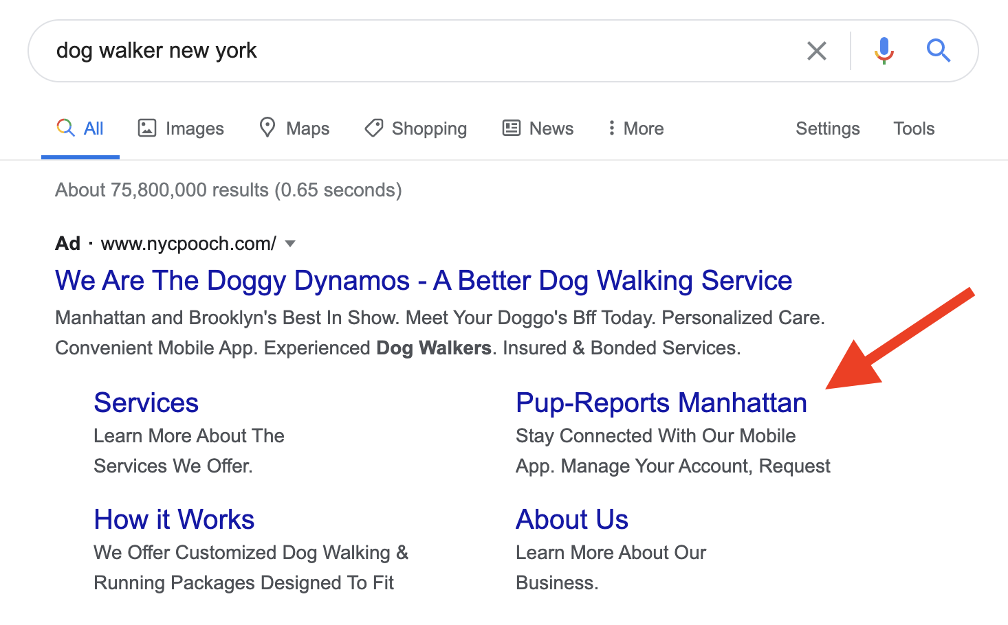 Dog walker new york search results in Google.
