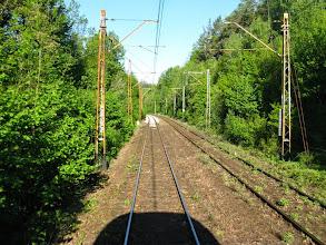 Photo: Szlak Wojanów - Trzcińsko