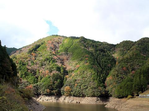 奈良交通「八木新宮線」 ・960 五條~上野地間 その10