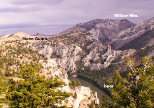 """Photo: Photo of Willow Mountain taken from other side of Missouri River a few years ago. """"Bear"""" marks the location where I encountered the bear on May 25, 2014."""