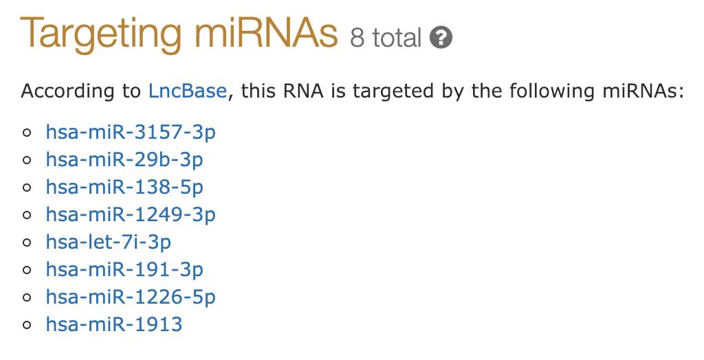 miRNAs targeting a lncRNA