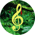 Sounds of Nature To Relax icon