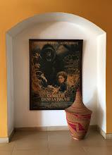 Photo: Ruanda muistaa edelleen Diane Fosseytä - tässä toki siis SIgorney Weaver ja gorilla