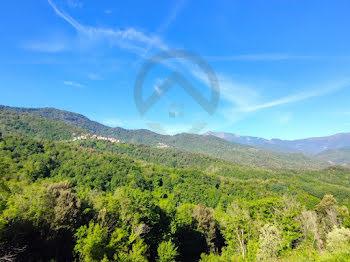 viager à Pruno (2B)