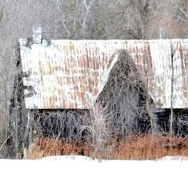 Barn by Jaliya Rasaputra - Buildings & Architecture Decaying & Abandoned
