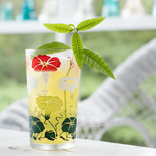 Cold Brew Green Tea with Lemon Verbena Recipe