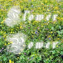 Photo: Flower Power