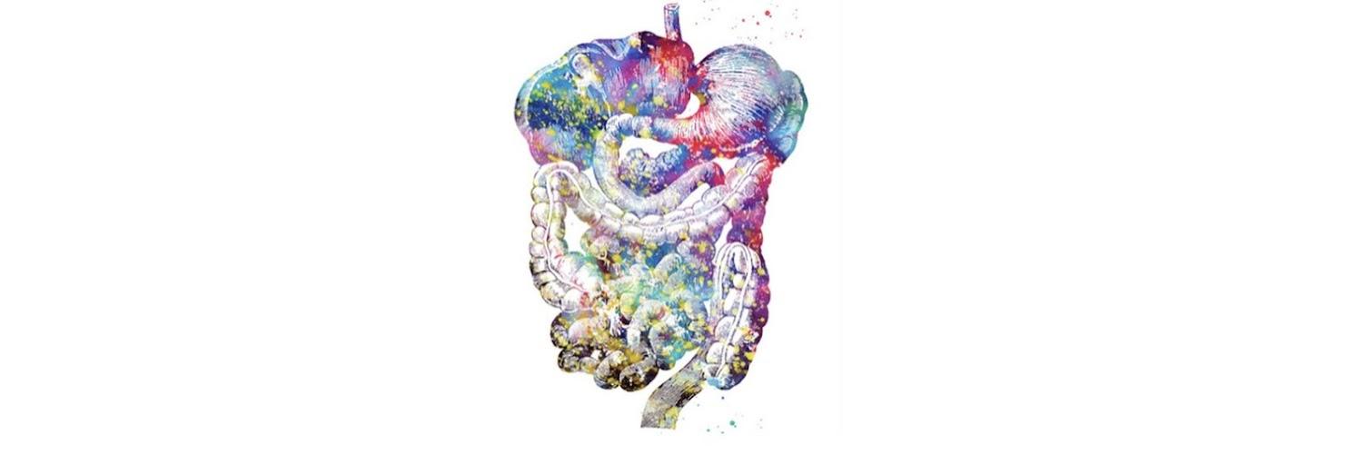 Digestive System Healing