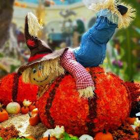 A Happy Scarecrow by Dee Haun - Public Holidays Thanksgiving ( x5494ce2, orange, bellagio, pumpkin, colorful, 2015, thanksgiving, public holiday, las vegas, sony rx-10, scarecrow, nevada, artistic objects, floral,  )
