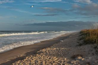Photo: Canaveral National Seashore