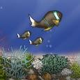 Fish Tycoon icon
