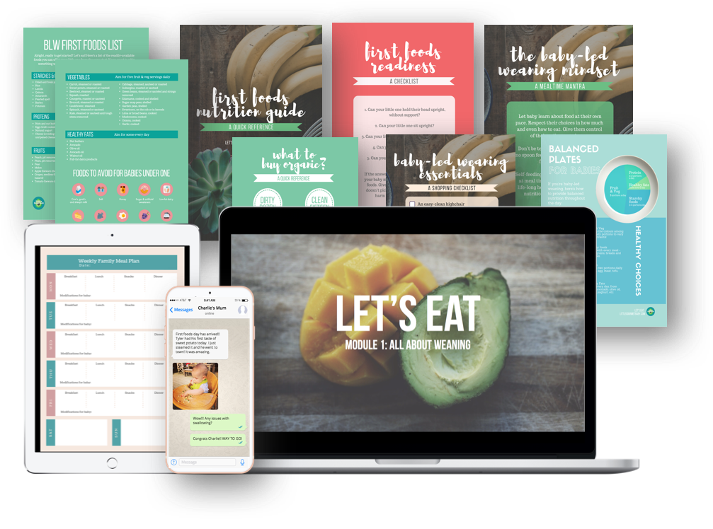 Let's Eat - Baby Led Weaning Video Course package