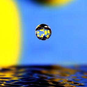 Polka Drop by Adi Suda - Abstract Water Drops & Splashes