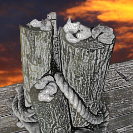 A Wood Pier by Edward Gold - Digital Art Places ( digital photography, red sky, shells, rope, wood pier, pier in black and white, scenic, digital art )