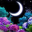 Ajisai-Firefly LWP Trial game APK