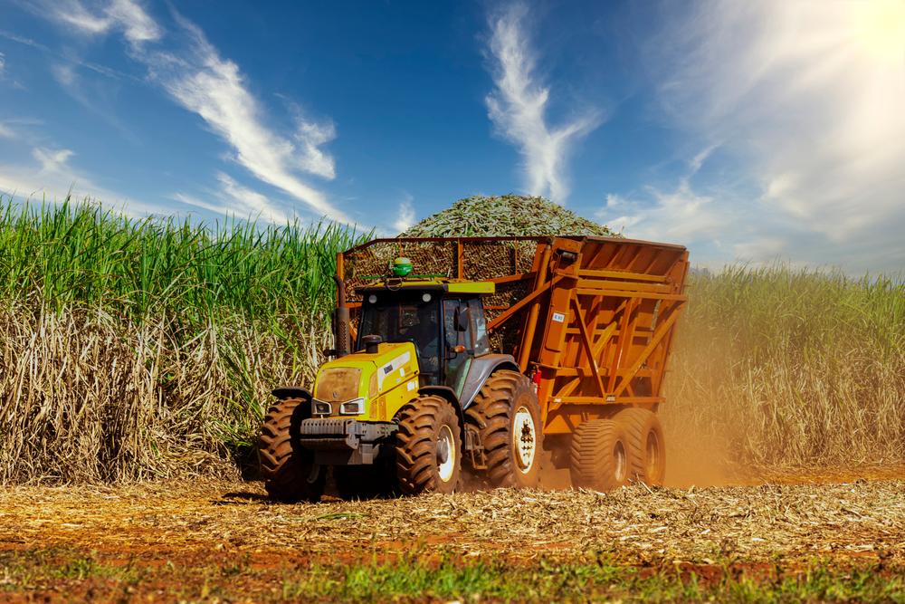 maquinário agrícola fazendo a colheita