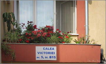 "Photo: Calea Victoriei, Nr.5 - balcon - 2017.07.07  (obs. am sters de pe inscriptie ""str:"" )"