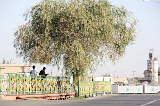 Photo: Day 161 -  Turkmenabat