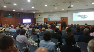Gran asistencia al Foro Empresarial de Asempal y Bankinter