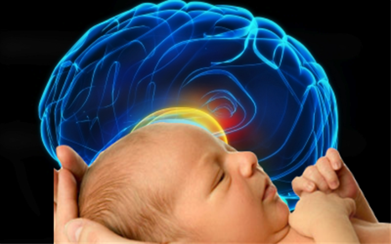 The Baby's Brain: Wider than the Sky