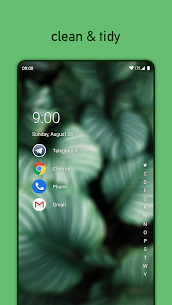 Niagara Launcher fresh & clean 1