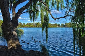 Photo: Perth's Jackadder Lake