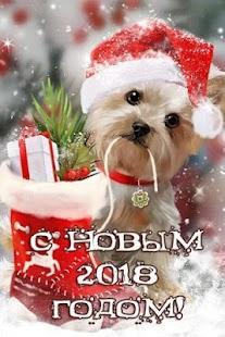 Новогодние поздравления - náhled