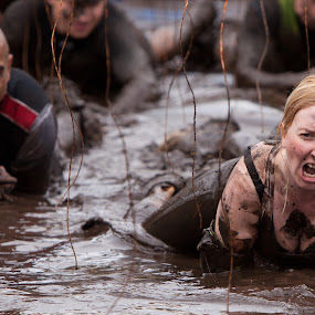 Tough Mudders and 10,000 volts by Phil Portus - Sports & Fitness Other Sports ( course, extreme, 2013, fitness, sport, tough mudder, cholmondeley )