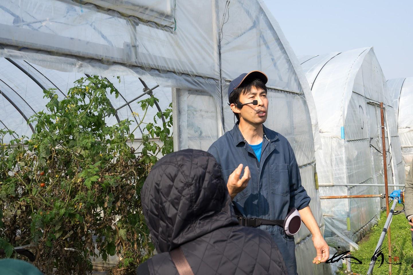 有機JAS認定圃場ミニトマト「フラガール」)のハウスを見学