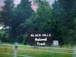 Photo: We left Deadwood through the Black Hills National Forest