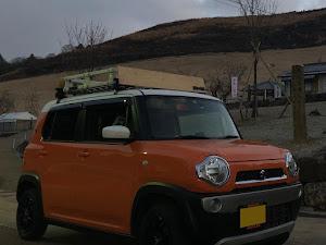 ハスラー MR31S G 5MT 2WDのカスタム事例画像 SUGURU@HUSTLERさんの2019年01月27日07:13の投稿