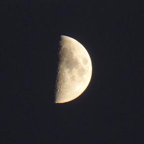 Moon by Kerry Demandante - Uncategorized All Uncategorized ( sky, moon, night, half moon, crater, lumix, evening,  )