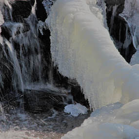 Natural Ice Sculpture by Karen Harris - Nature Up Close Water ( water, icy, winter, waterfalls, cold, ice, frozen,  )