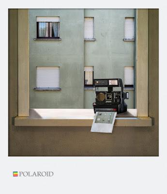 polaroid di bi
