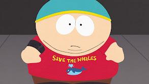 Whale W... thumbnail