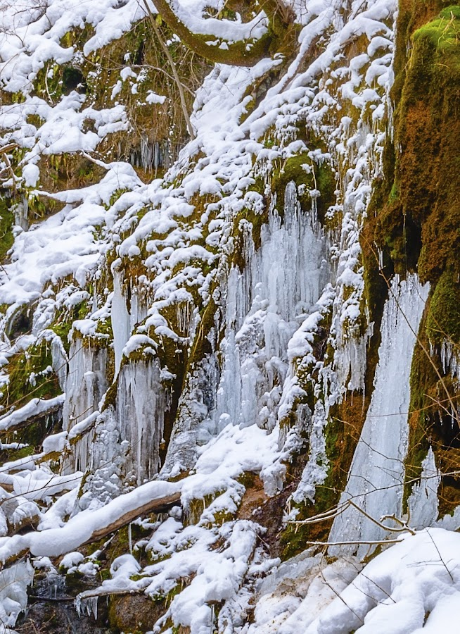 Frozen stream by Tom Mat - Nature Up Close Water ( water, stream, winter, ice, frozen )