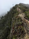Indonesia. Papua Baliem Valley Trekking. Trail by the edge of the cliff.
