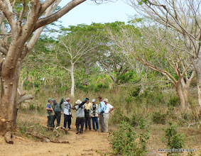 Photo: Birding the woodlands at Chacalilla