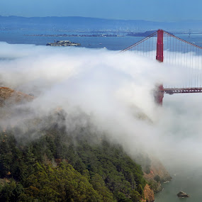 Golden Gate Fog by Lee McLaughlin - Travel Locations Landmarks ( golden gate bridge, fog, bay, alcatraz, with sumer, atmospheric, san francisco )