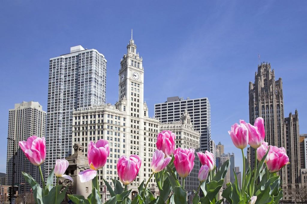 Magnificent Mile is situated in the heart of downtown Chicago