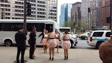 Photo: Passed a wedding party as I was coming to the end of the Magnificent Mile. Their dresses were cute.