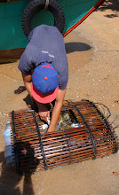 Photo: crab basket