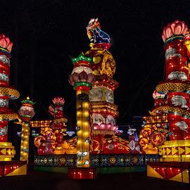 Lantern Featival 5 by Harvey Lindenbaum - City,  Street & Park  Night ( chinese lantern festival, night )