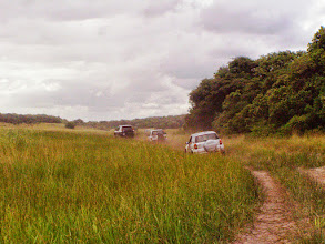 Photo: Off road in Mozambique