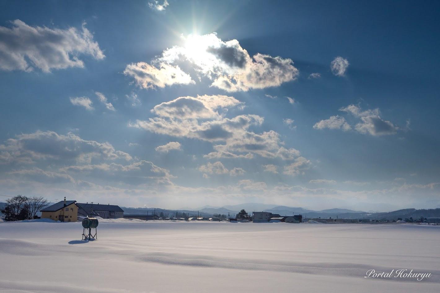 雪原にひとりぼっち