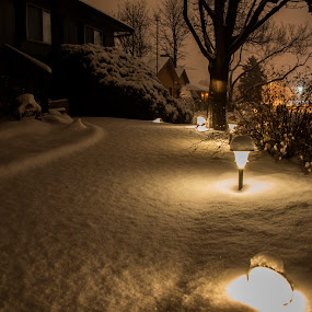 Snow covered walkway by Sean Markus - City,  Street & Park  Vistas ( snow covered walkway, fresh snow, snow, winter, winter night shot, night shot )