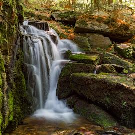 by Jiri Reisser - Nature Up Close Water